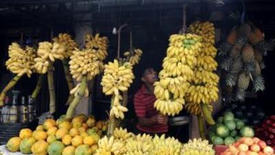 Las frutas son una gran fuente de energía durante el verano