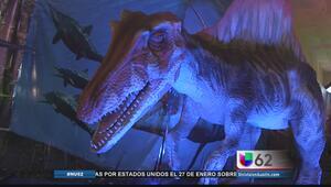 Dinosaurios invaden Austin este fin de semana