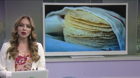 Llevaba escondidos miles de dólares en masa para tortillas