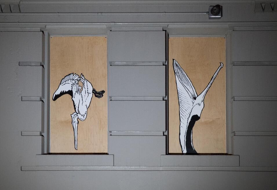 Guía de aves en los grafitis de Nueva York 8%20BrownPelicans_MikeFernand...