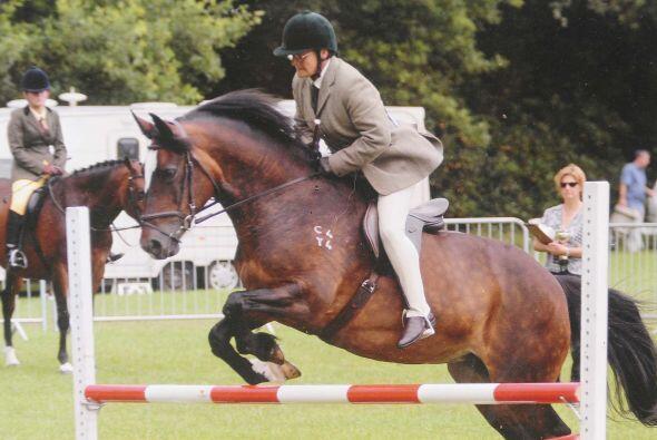 Desde joven, practicaba equitación, pues los caballos era una de...
