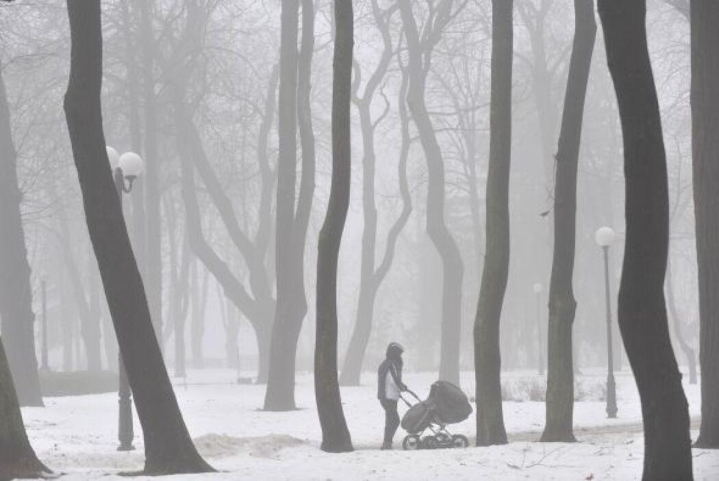 Un anticiclón se extiende sobre la mayor parte del territorio ucraniano,...