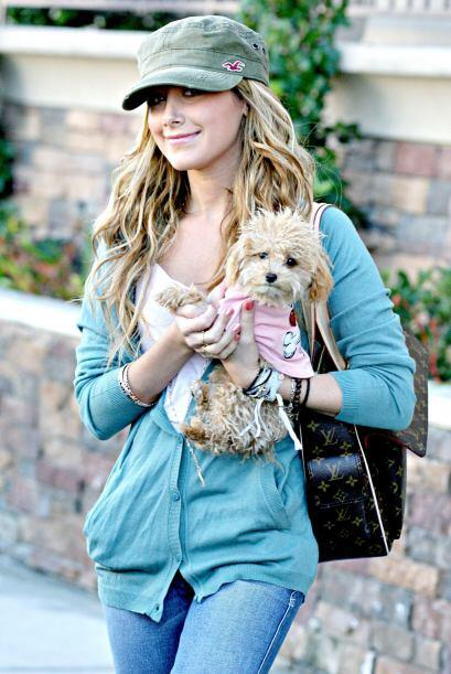 ¡La actriz  Ashley Tisdale adora a su perrita Maui! La cuida y con...