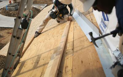 ¿Qué plan tiene si su permiso de trabajo DACA expira y no es renovado?