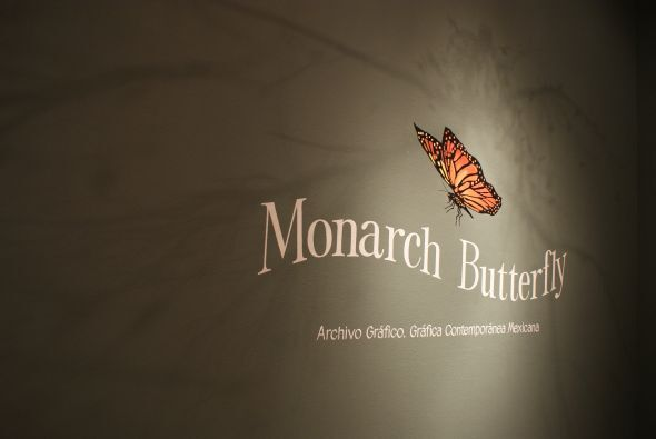 Las míticas mariposas monarca también están presentes en la exposición.