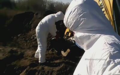 Encuentran 117 cadáveres en fosas clandestinas en Morelos