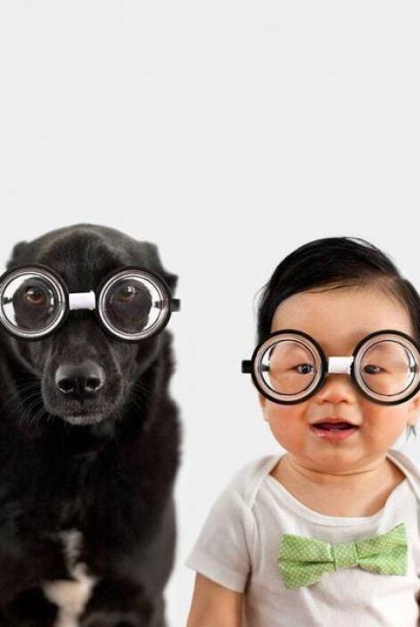 Wow! Mira ver como un perro rescatado en Taiwan y un Bebe se hacen los m...
