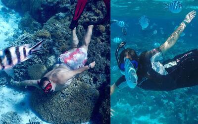 Mi Mundo con Mia, Raúl y Mia enfrentaron a los tiburones en Bora Bora