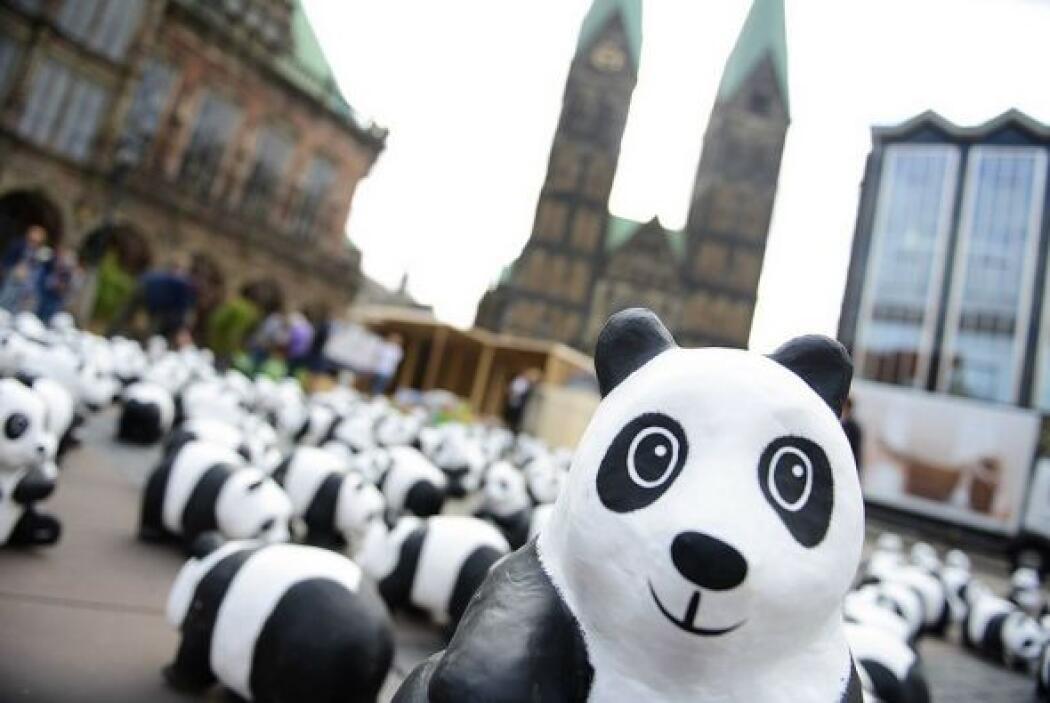 WWF lanzó la campaña Pandas on Tour en coincidencia con los 50 años que...