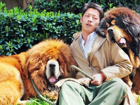 Un excéntrico millonario chino pagó $1.9 millones de d&oac...