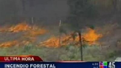 Incendio en Spring, Texas obligó a la evacuación de residentes de una su...