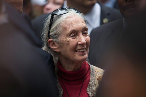 La primatóloga Jane Goodall.