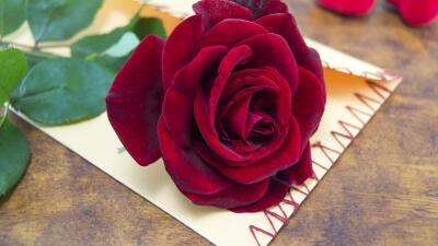 Emblema del amor y el romance