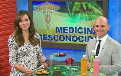 Los beneficios medicinales de la marihuana