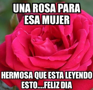 """""""Una rosa para esa mujer hermosa que está leyendo esto... Feliz día""""."""