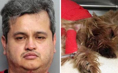 Añaden un nuevo cargo criminal al hombre acusado de matar a su mascota