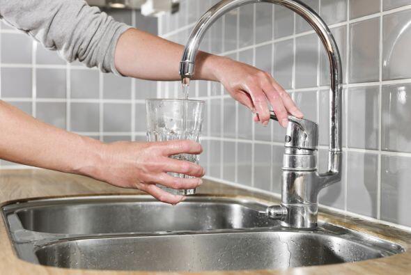 Lo llenarás de agua del grifo -¡no de agua fría de l...