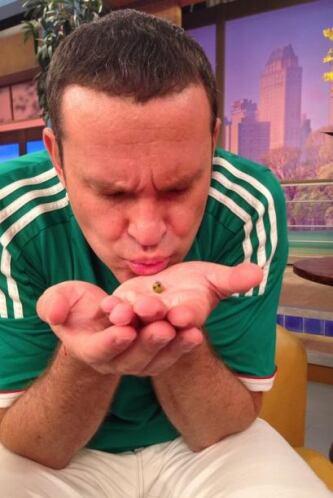 """""""Ayy nanita como quiero al chicharito vidente en @DespiertaAmeric al rat..."""