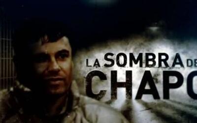 La Sombra del Chapo