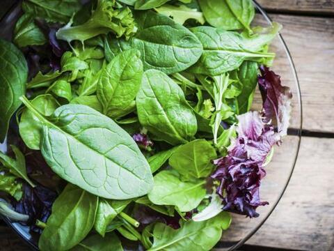 Entre las hojas verdes, la rúcula o arúgula, como se la co...