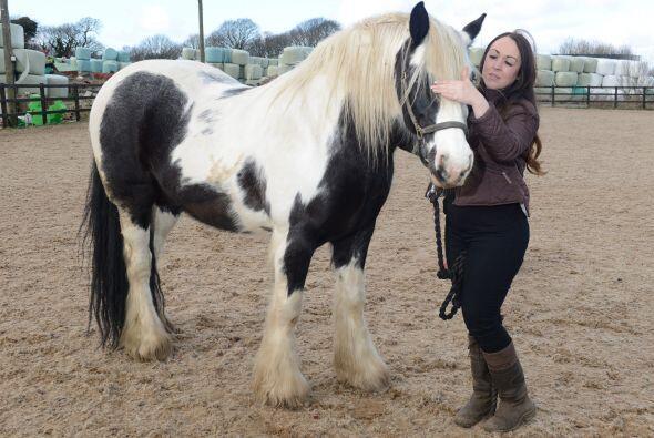 Amy Lawrenson de St. Helens, Lancs, encontró su carrera con sus m...