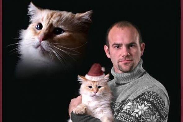 Crees que tu gatito quiera ser protagonista de una tarjeta navideña como...