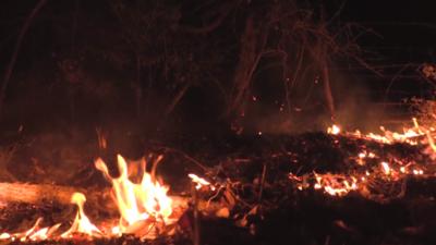 El incendio forzó la evacuación de decenas de casas en Smithville y ha c...