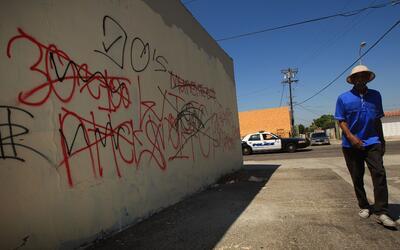 Las pandillas marcan su territorio.