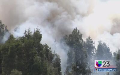 Fuego en maleza en Miami-Dade