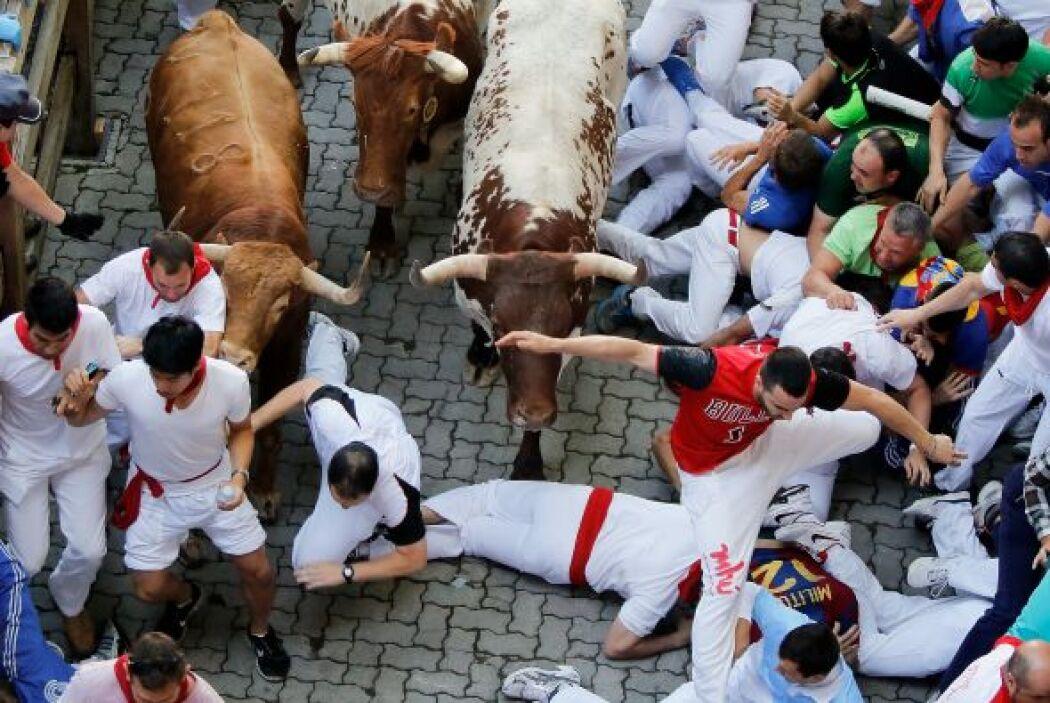 Los toros que se quedan aislados pueden ser peligrosos porque pueden des...