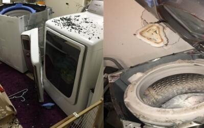 Imágenes de lavadoras de Samsung incluidas en la demanda contra l...