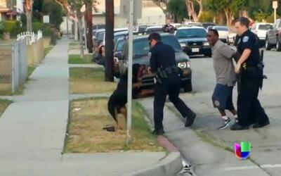 Polémica por policía que disparó a un perro en California