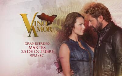 """""""Vino el amor"""" llegará muy pronto por Univision"""