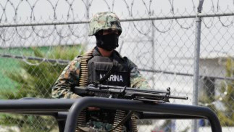Elementos de la Marina Armada de México lograron la captura.