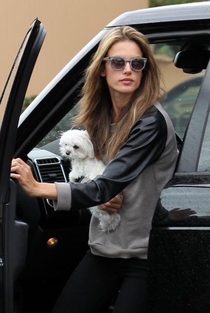 A Alessandra Ambrosio, luego de tener dos hijos y un esposo, le qued&oac...