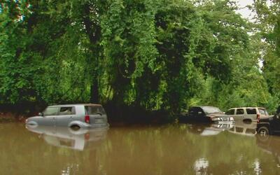 Qué tipo de ayuda puede obtener si su auto fue afectado en las inundaciones