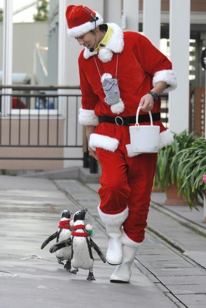 Santa también saca a pasear a sus pingüinos.