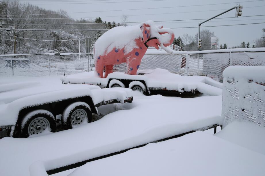 ¿Por quién vota la nieve en las primarias de New Hampshire? GettyImages-...