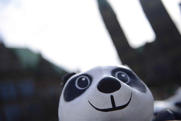 Los pandas se encuentran en riesgo desde mediados de los 80 cuando fuero...