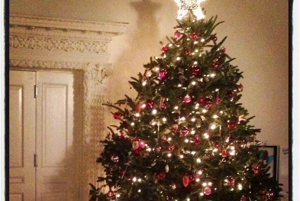 La modelo de Victoria's Secret, Miranda Kerr, eligió un gran árbol para...