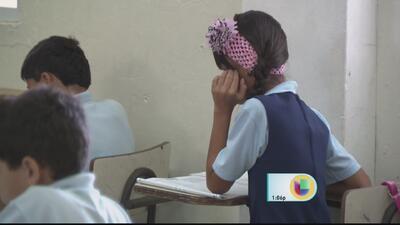 Ya se reparten guías de equidad de género en las escuelas