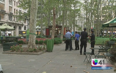 Caída de árbol en Bryant Park deja heridos