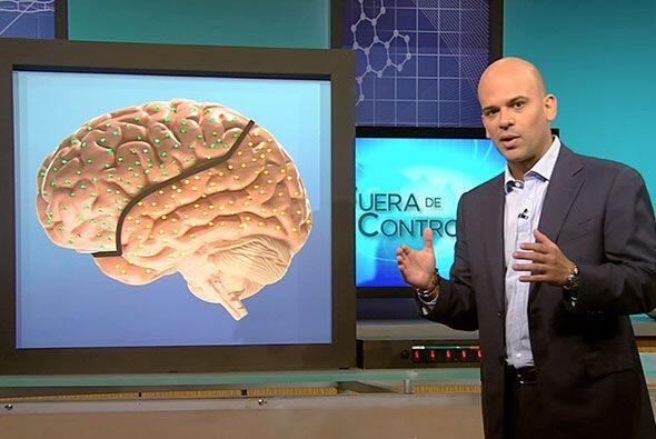 El doctor Juan también disertó acerca del funcionamiento del cerebro de...
