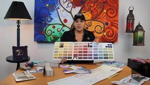Cómo elegir el color de pared para tu casa