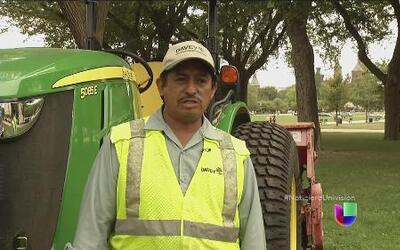 Un hispano cuida los jardines donde marchan los indocumentados