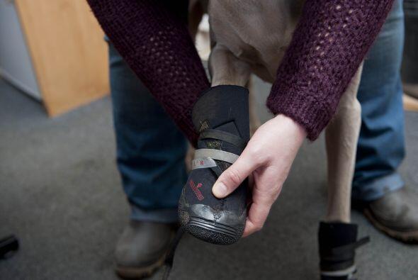 Antes de encontrar estas maravillosas botas, Julie había intentado con c...