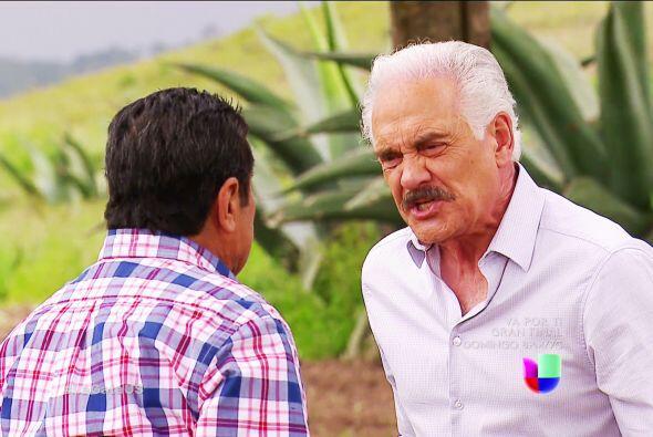 Las maldades no pagan don Agustín, ¡qué bueno que Fe...