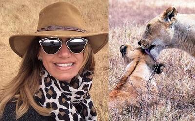 Lili se quedó impresionada con la potencia sexual de los leones que vio...