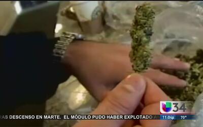 La marihuana legal puede complicar a los inmigrantes