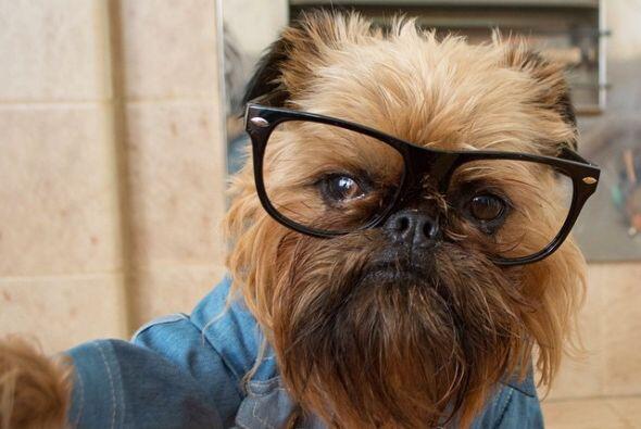Su estilo es único, tanto que los han declarado unos hipsters.